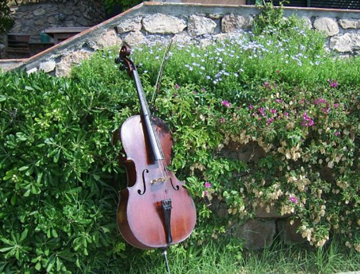 violoncello copia
